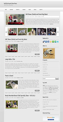 Wordpress blog website